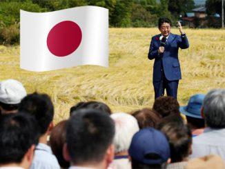 พรรคการเมืองในประเทศญี่ปุ่น